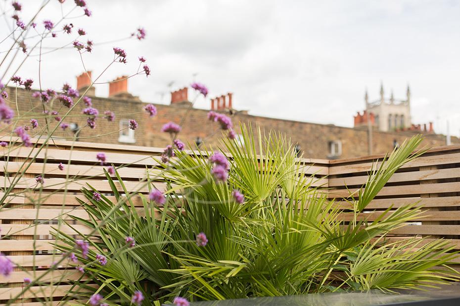 Garden Terrace Design
